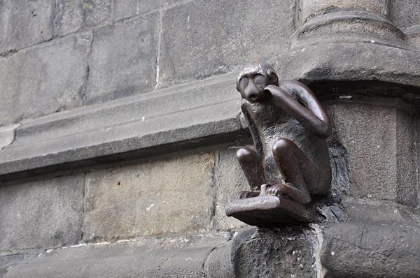 Mons Monkey