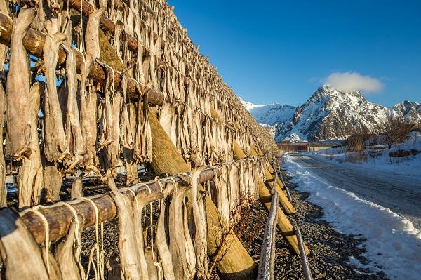 Norwegian Dried Fish