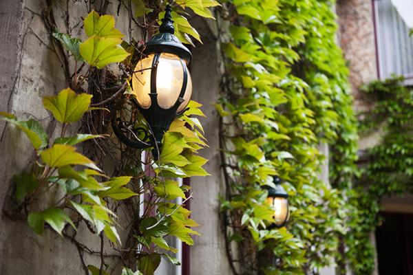 Bruges Lamps