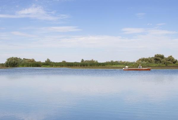 Lake Tisza