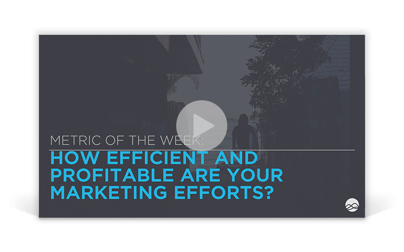 How Efficient and Profitable Are Your Marketing Efforts?
