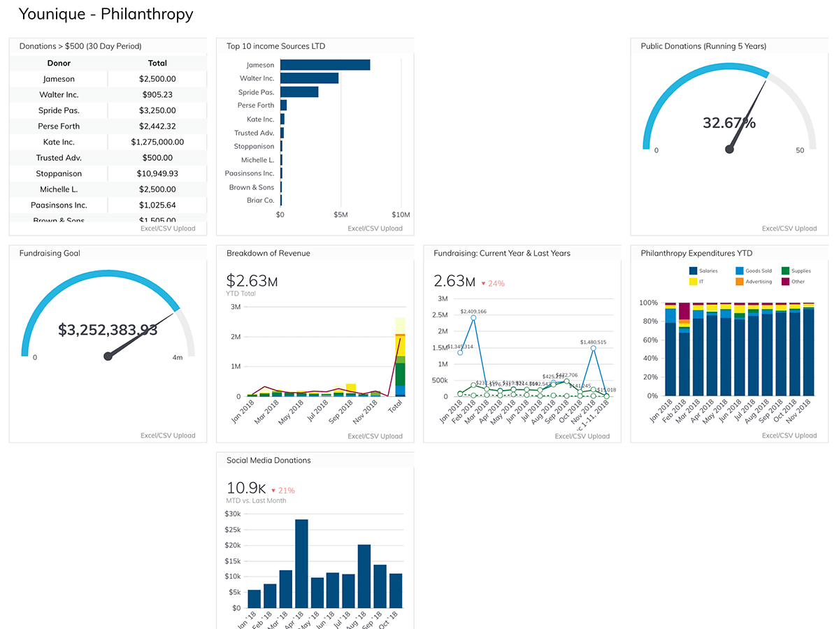 Philanthropy Efforts Dashboard