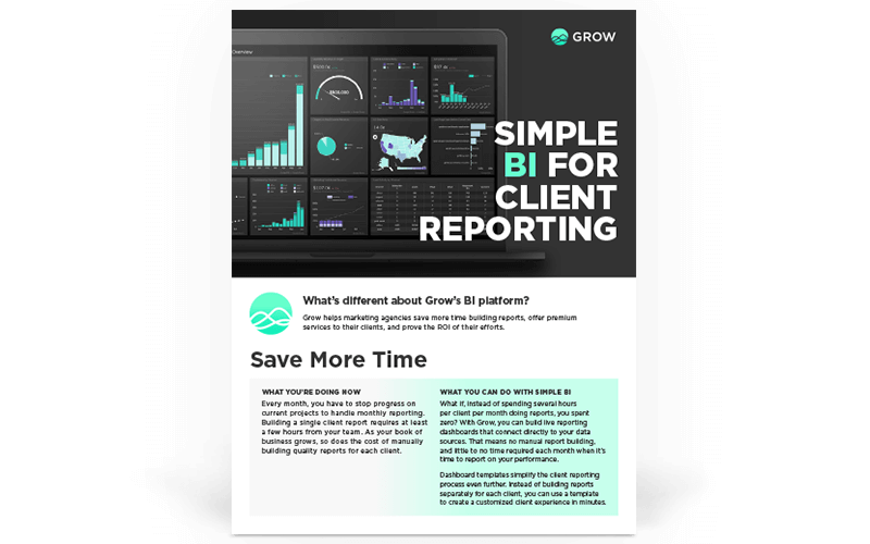 Simple BI for Client Reporting