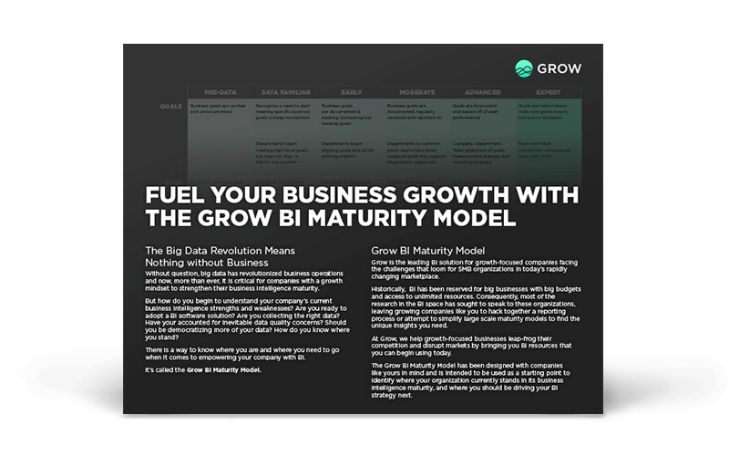 The Grow BI Maturity Model