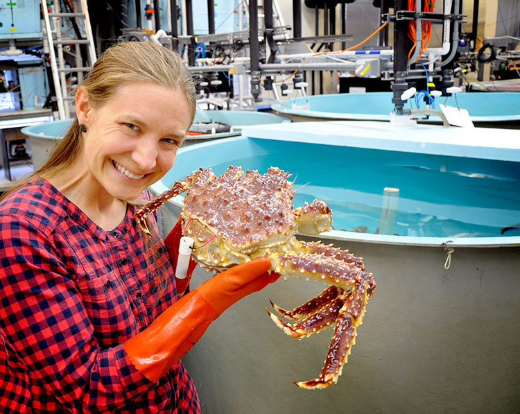 NOAA Fisheries scientist Leah Zacher with tagged Alaska red king crab