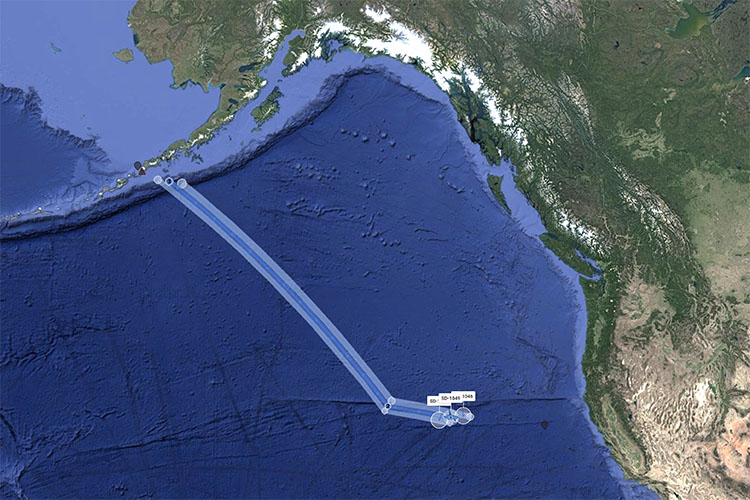 Saildrones sail to Bering Sea from San Francisco