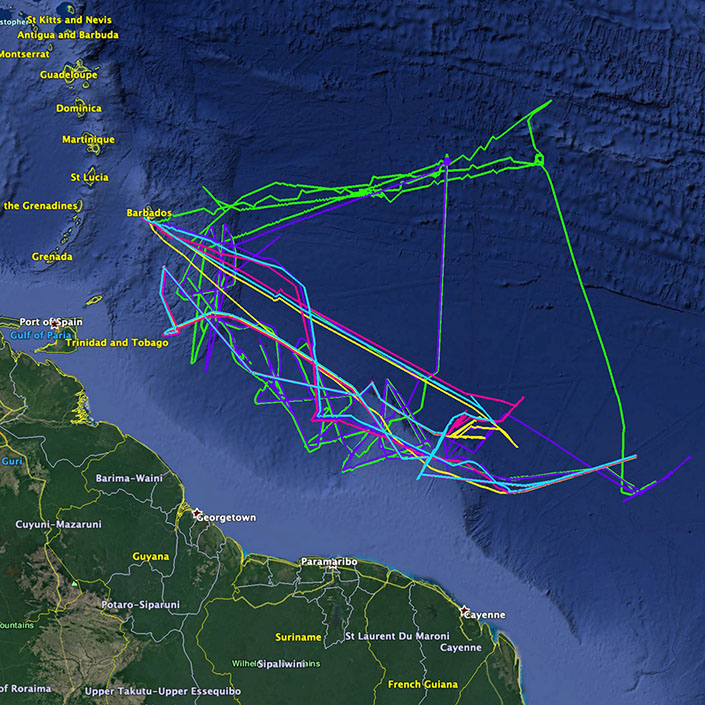 Tropical Atlantic Mission Wraps Up After 6 Months at Sea