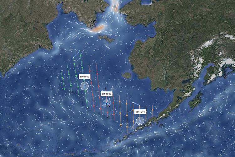 Saildrone survey track in the Bering Sea to measure the abundance of Alaska pollock