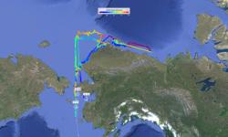 Arctic Single-Beam Mapping