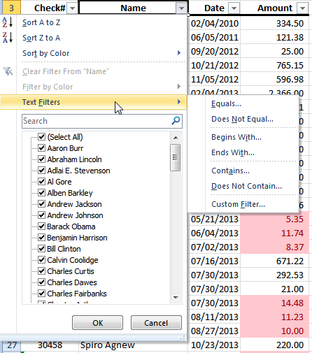 name data filter in excel