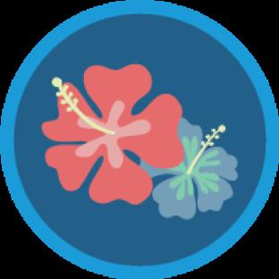 Qualified.com Salesforce Ohana Plan