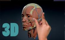 3D touchscreen