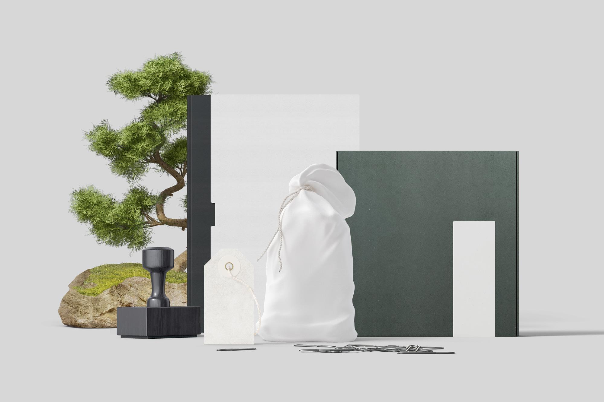 Branding mockups, book, tag and box