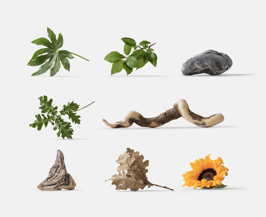 A collection of isolated plants for your mockups