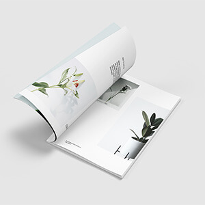 Big collection of magazine mockups