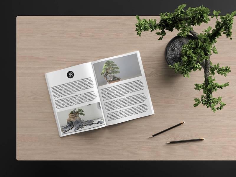 Free Modern Catalog Magazine Mockup