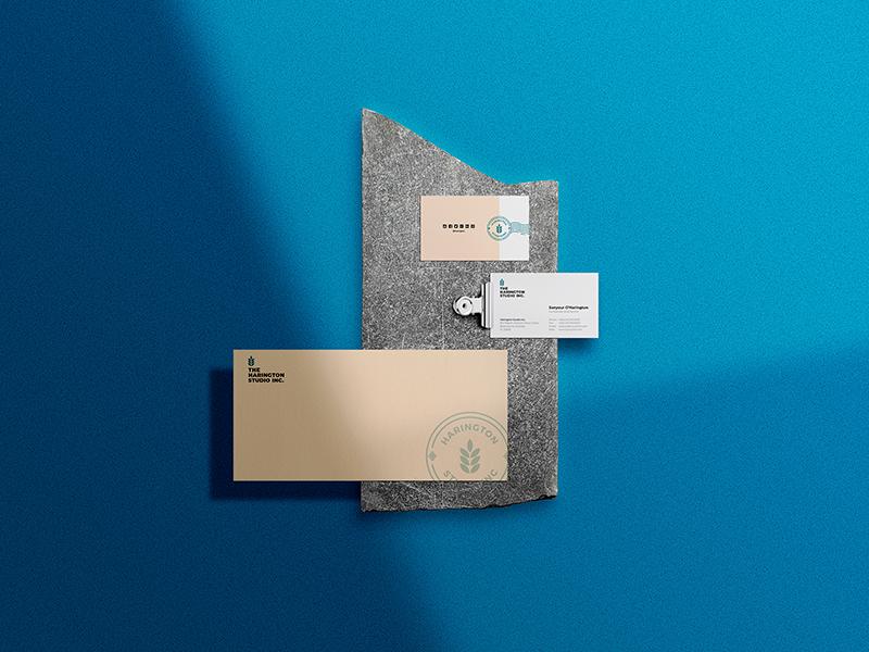 Stationery Envelope & Business Cards PSD Mockup