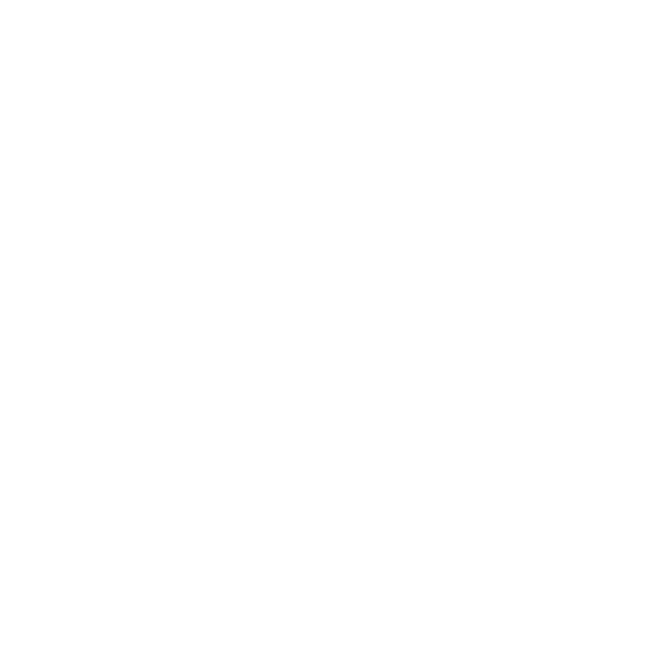lions group logo