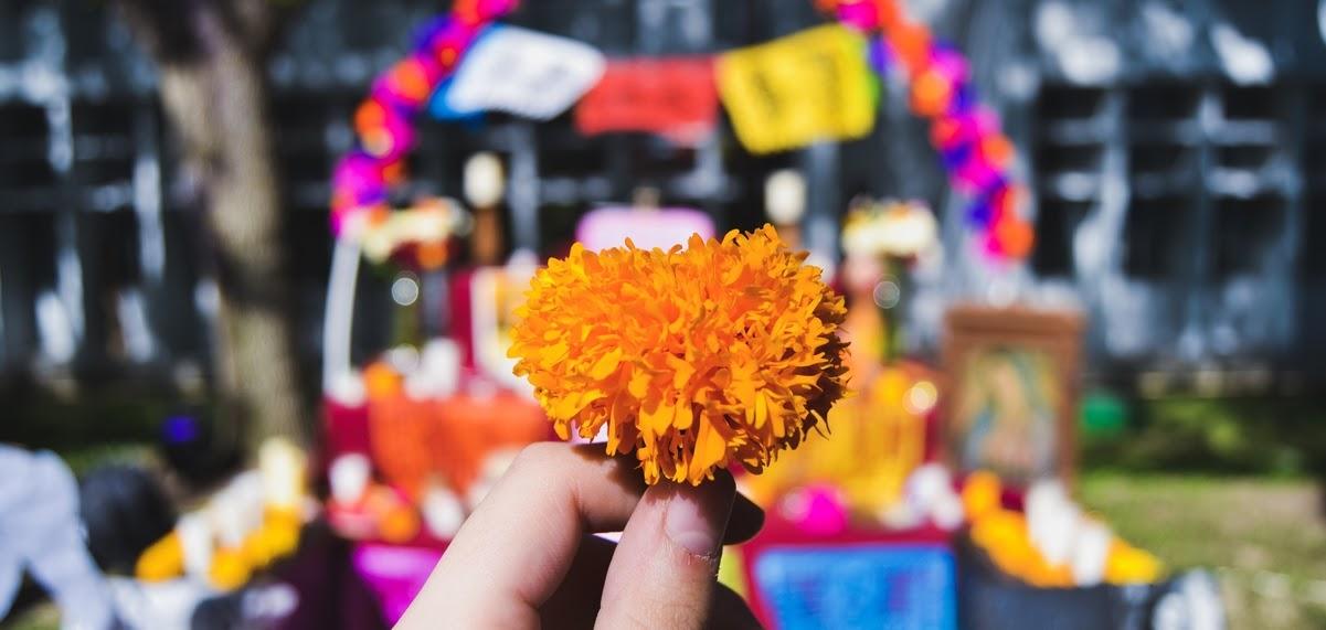 Tradiciones de Dia de Muertos | Toa Mexico