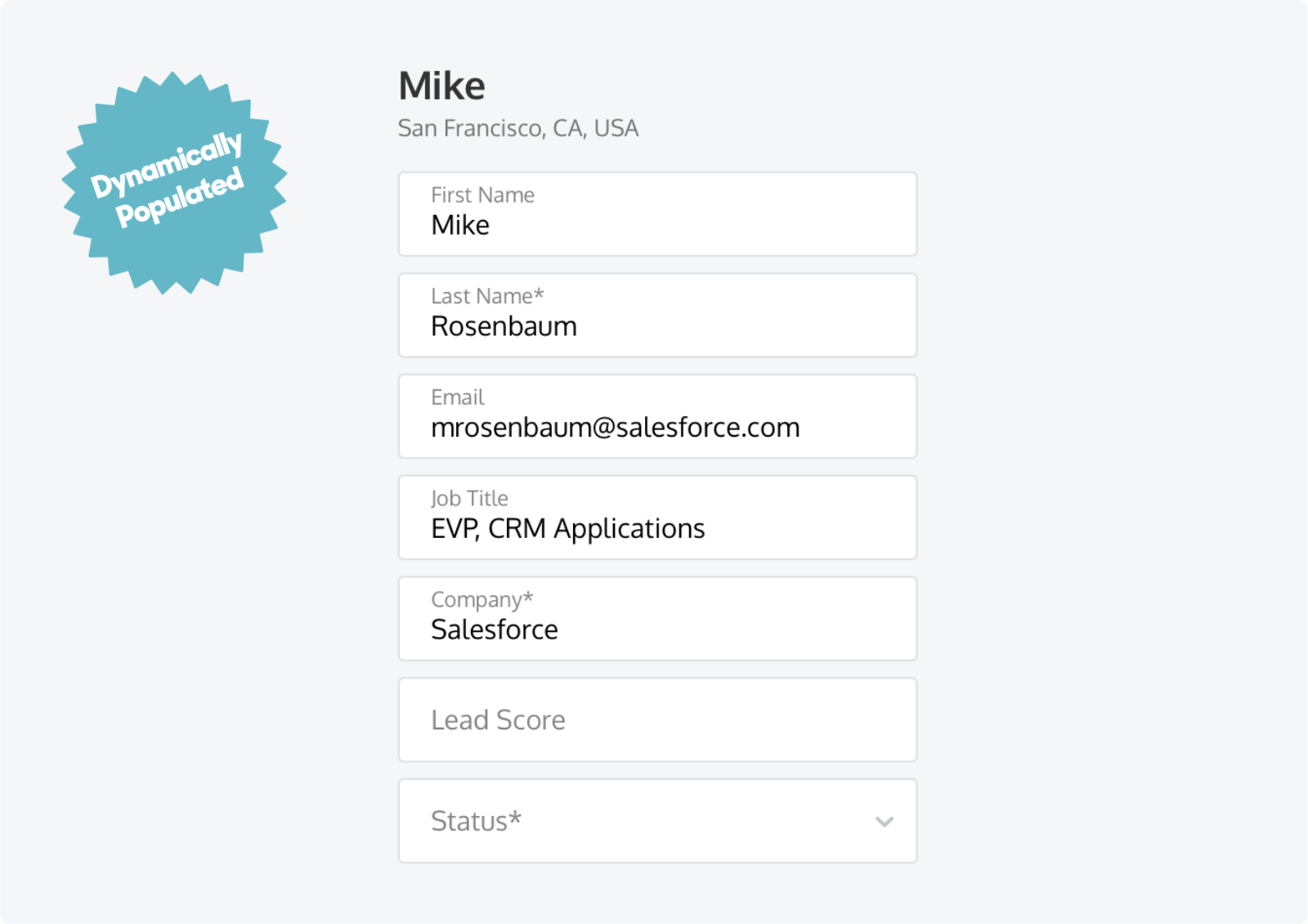 Dynamically populating Lead Fields for return website visitors