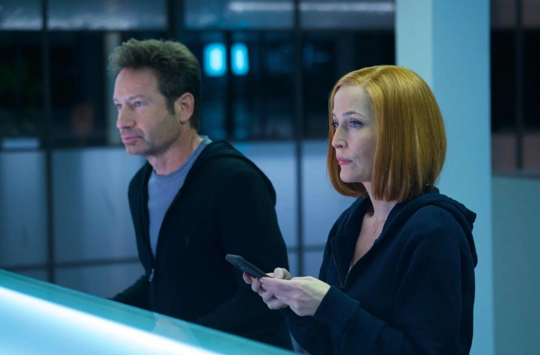 Fox Mulder (David Duchovny) and Dana Scully (Gillian Anderson)