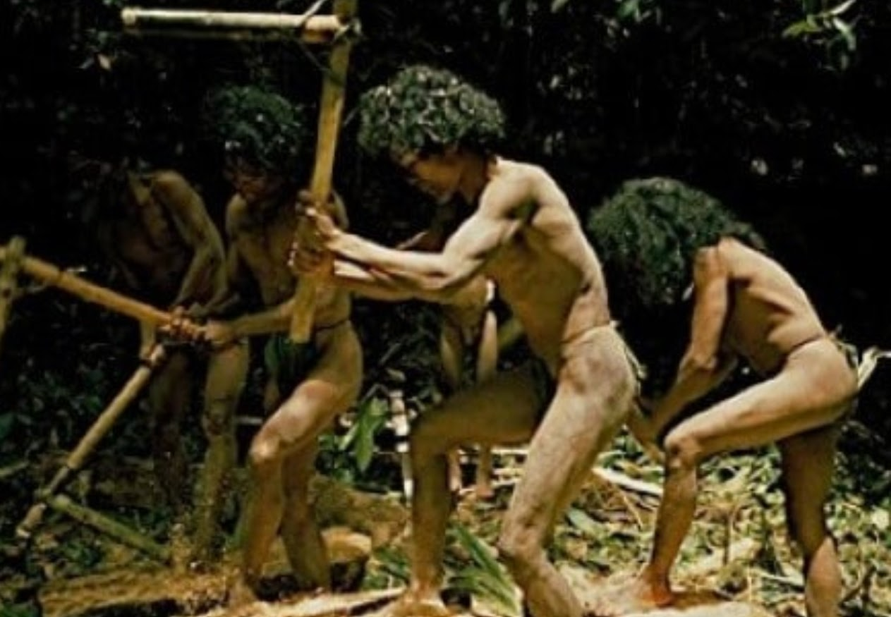 The Tasaday Tribe