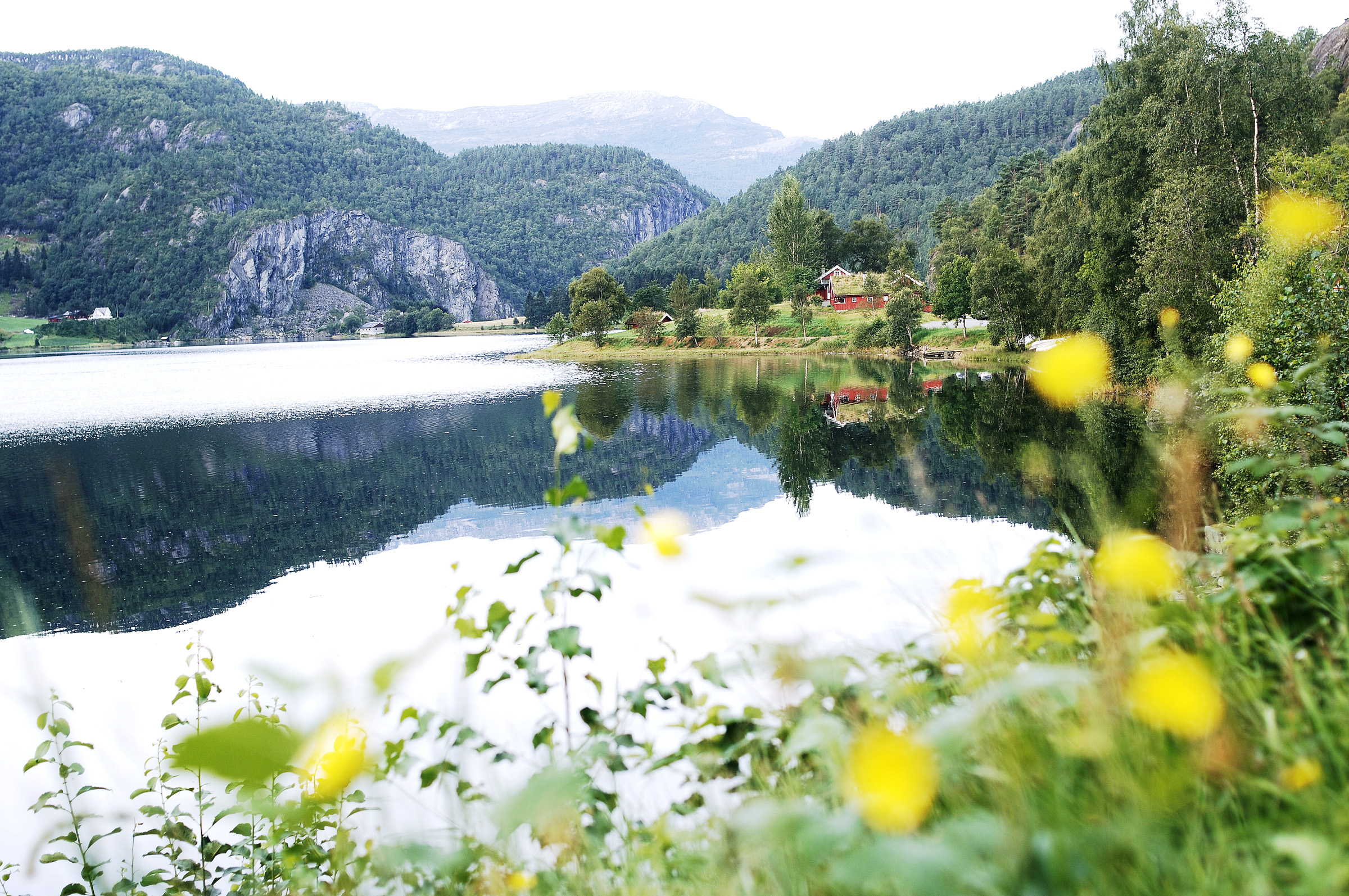 Bilde av Suldalsvatnet