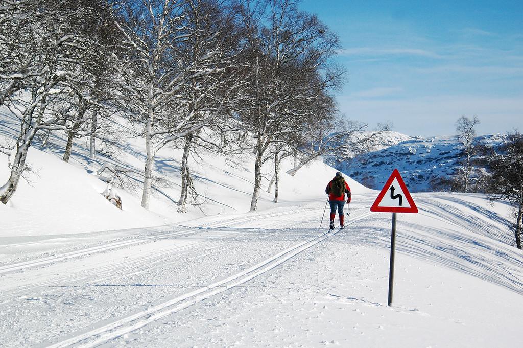Mennske på ski