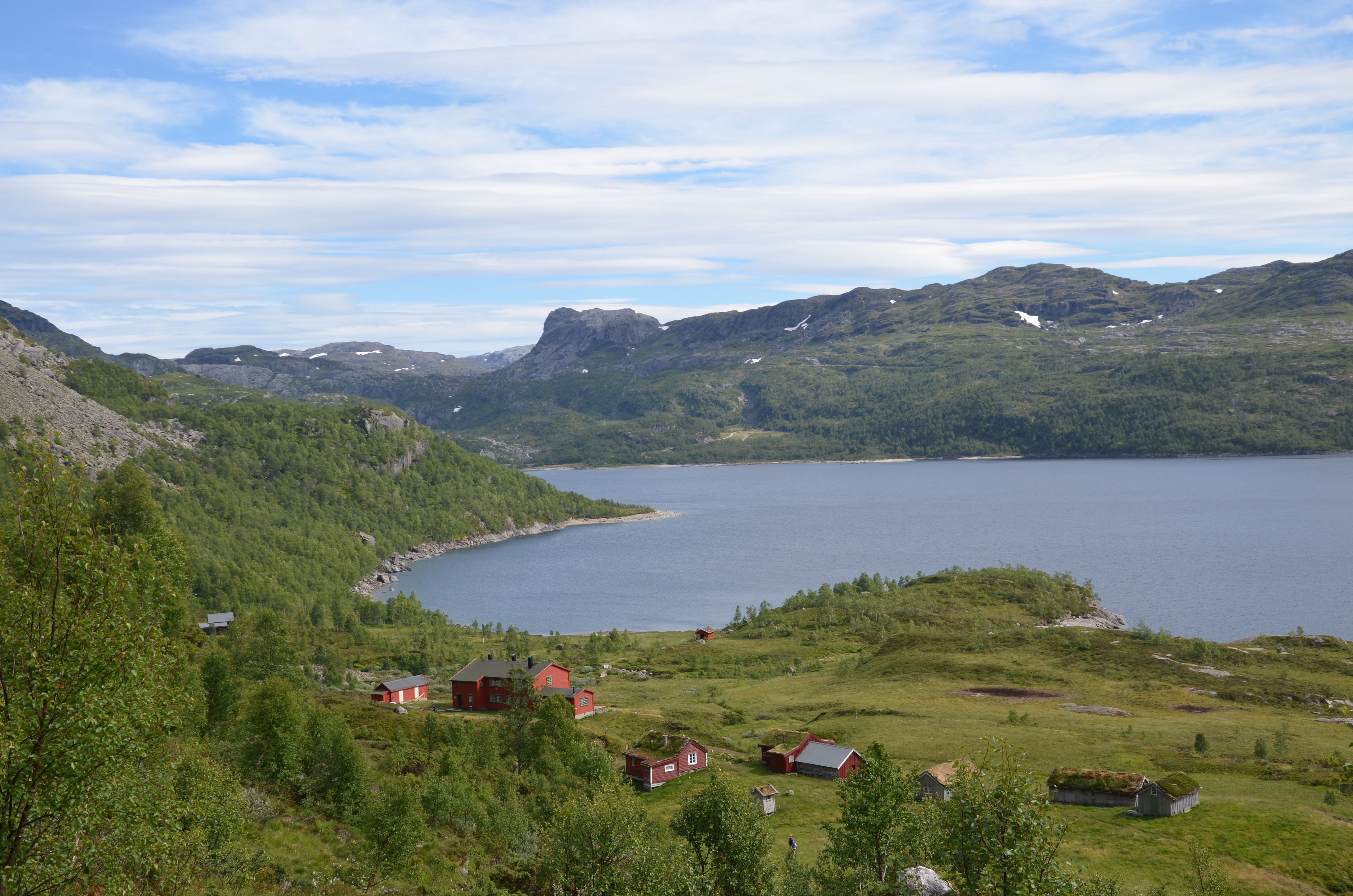 Fugleperspektivbilete av villmarksleik på Sandsa sumaren 2018.