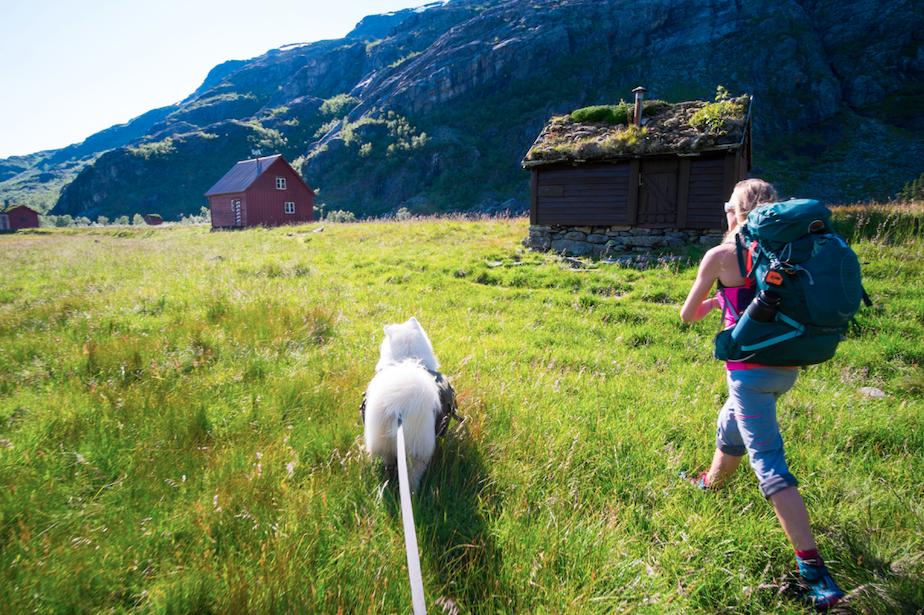 Dame og hund på veg mot Kvanndalen hytta.