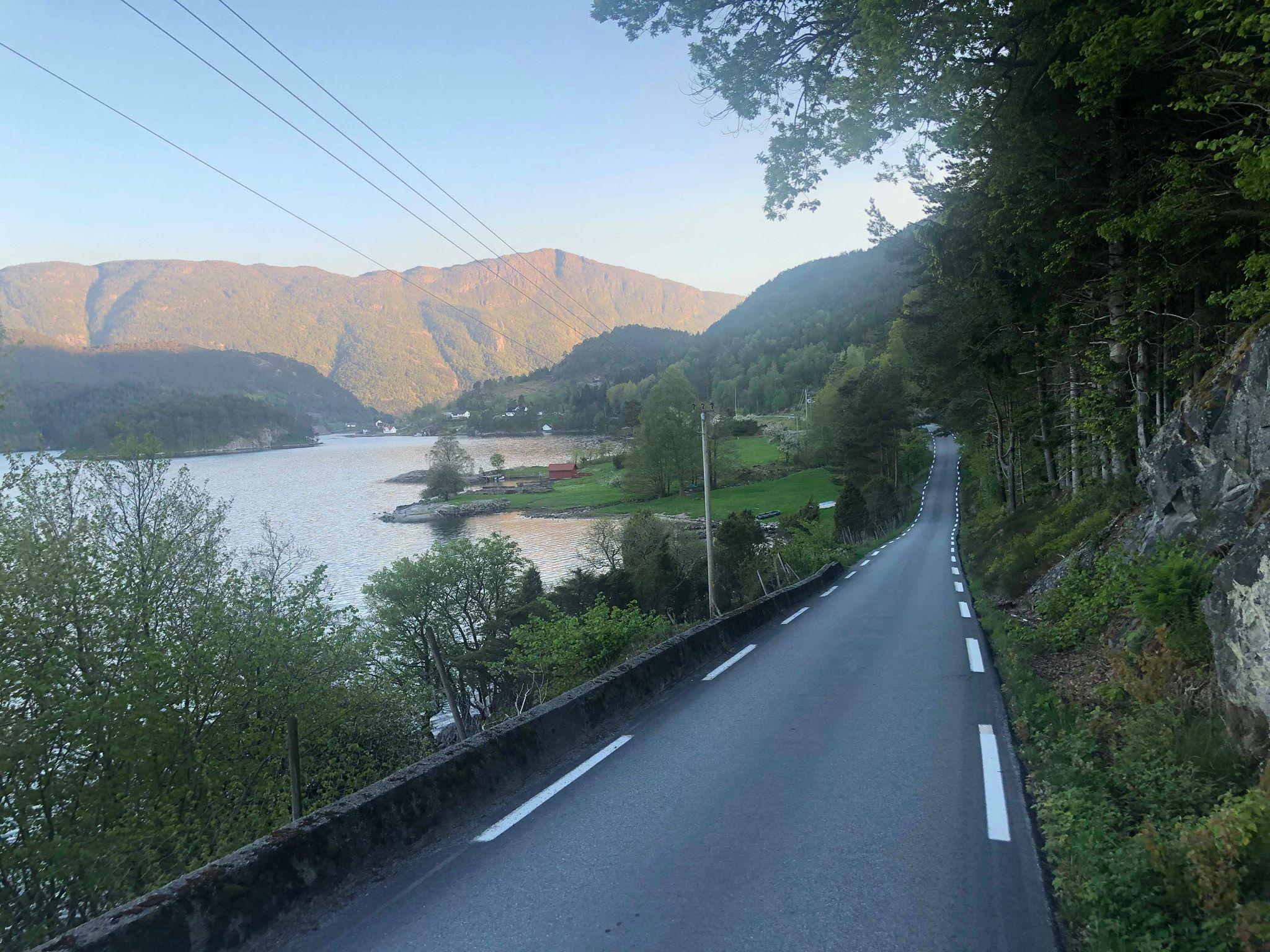 Veg ved fjord