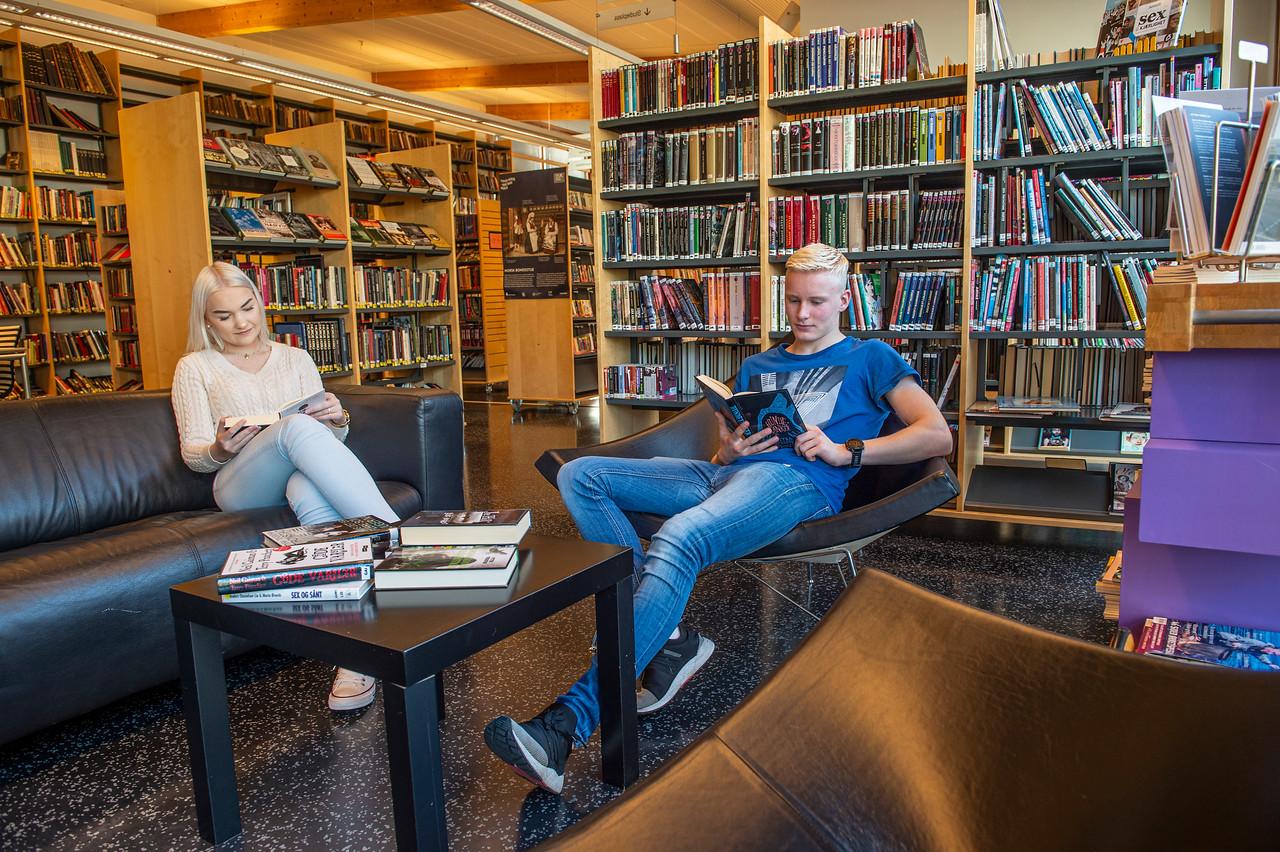 Lesing på biblioteket