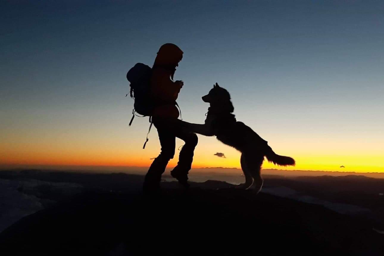 Hund og menneske på fjelltopp