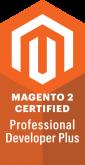 Professional Developer Plus