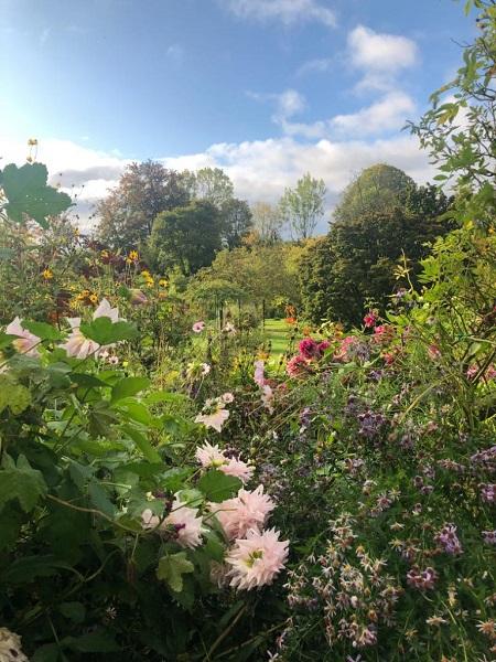 Monet's Garden Jess Robins