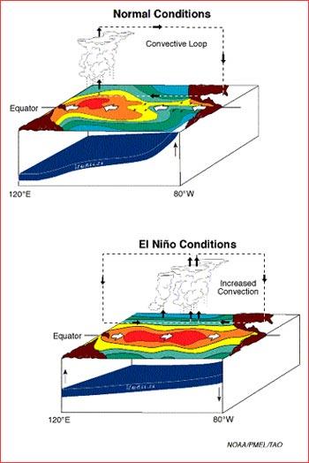 El Niño, El Desastre: Part 1