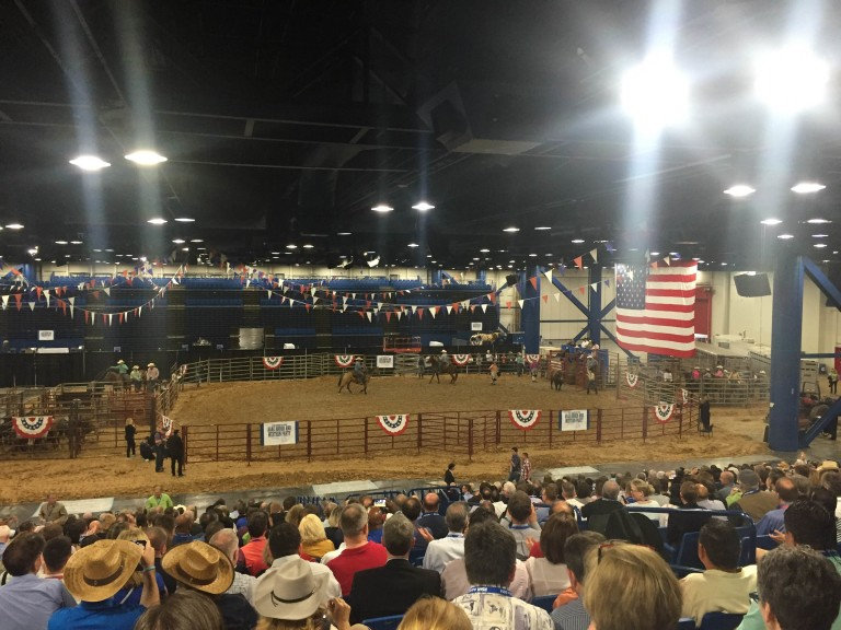 Rodeo at AAAE.