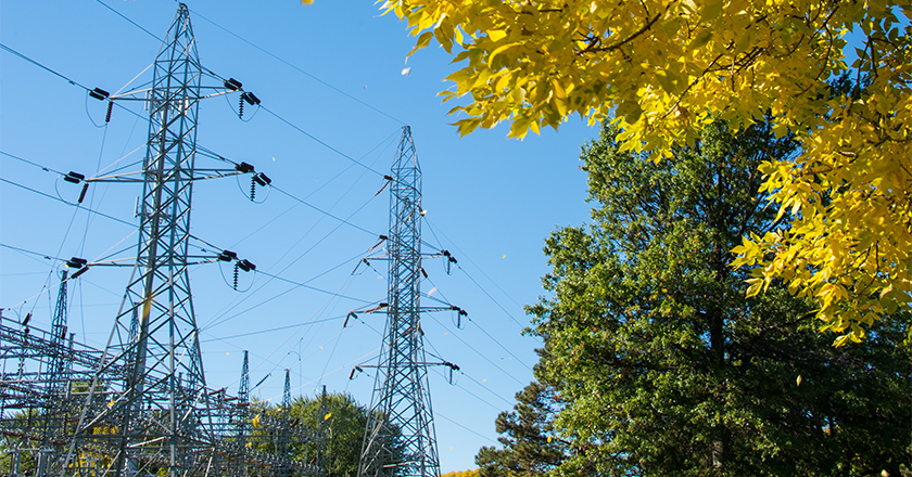 How Vegetation Management Keeps the Grid Going