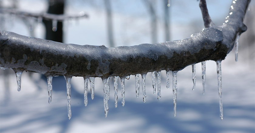 Preparing for Winter Weather: Ice Storms