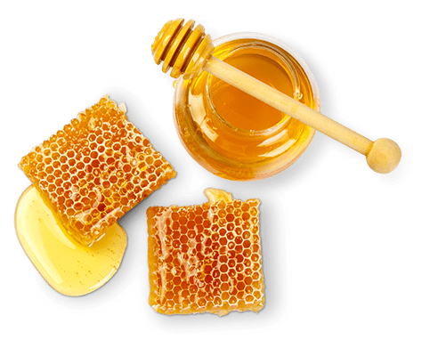 Honeycomb and honey jar