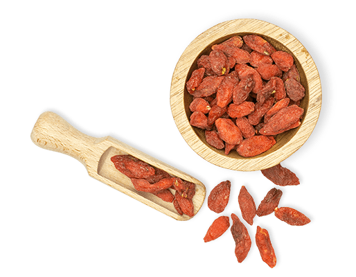 Goji berries bowl with scoop