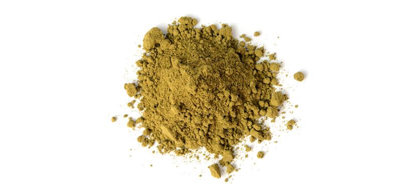 hemp protein powder supplement
