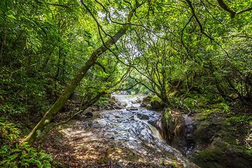 Darien National Park