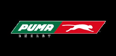 Puma energy - declaración de renta