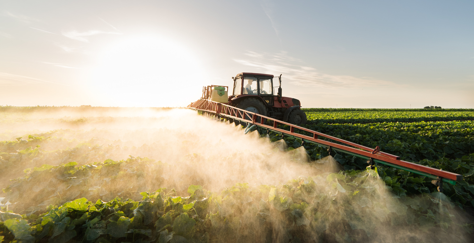 To prevent further injuries from this potentially devastating toxic herbicide, a coalition of groups filed a lawsuit in the U.S. Court of Appeals for the Ninth Circuit last week aiming to reject the EPA's recent decision to renew its approval for the use of paraquat.