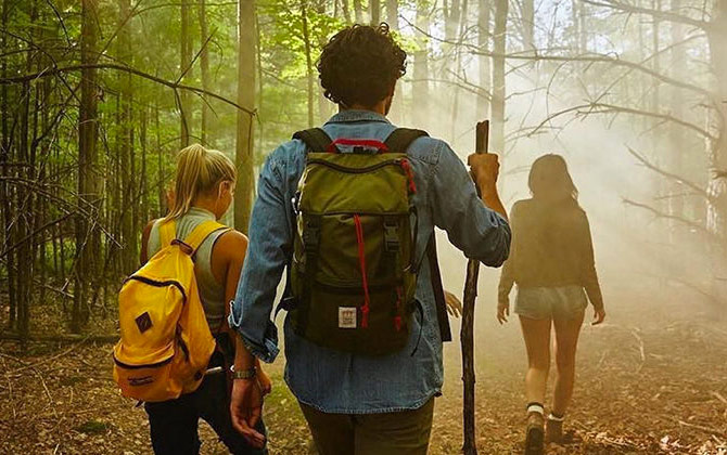 Three people hiking through a sunlit forest