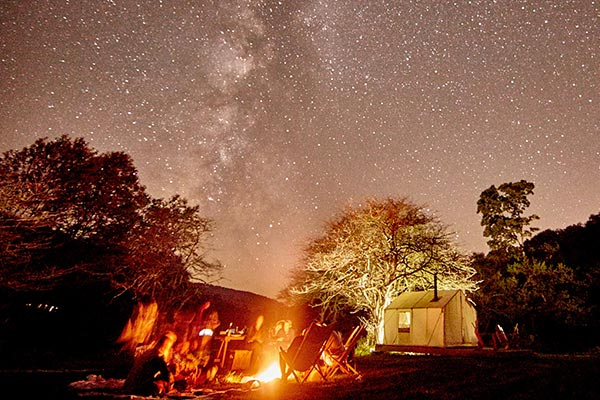 Campers around a campfire under a clear star-filled sky