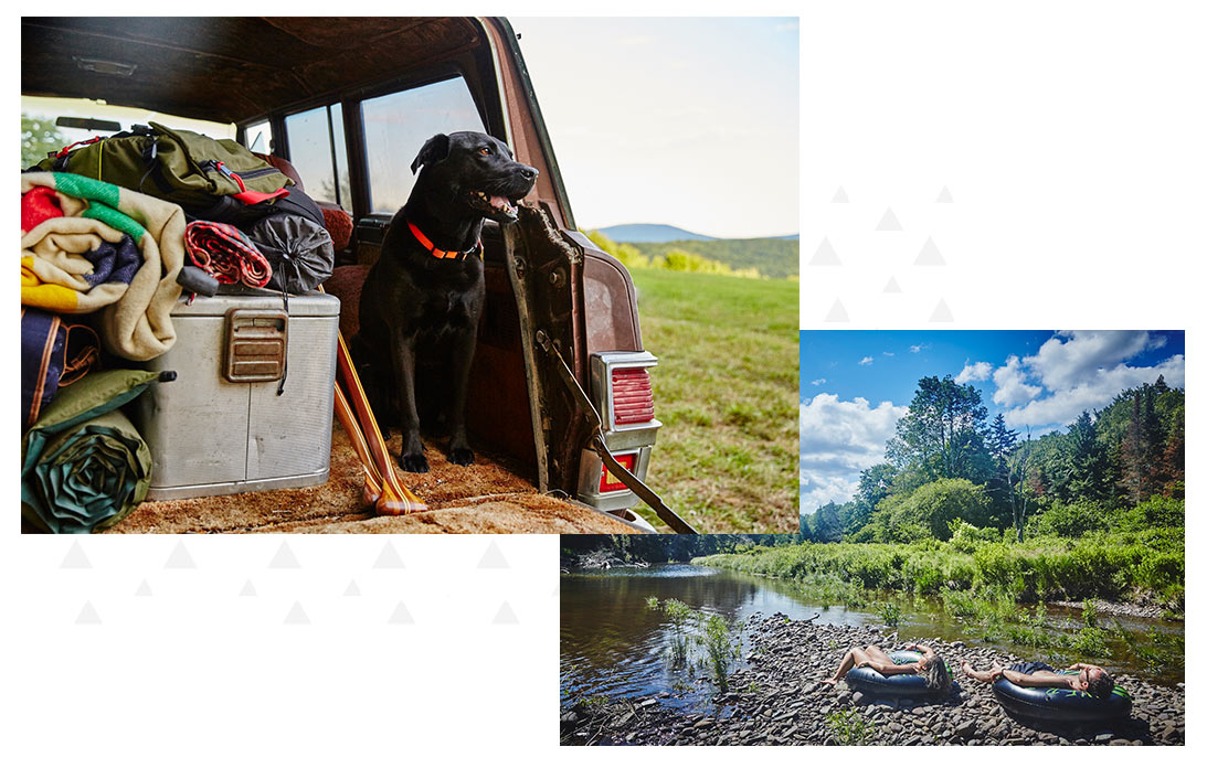 Collage of dog in the back of a truck and people lying on tubes in the sun