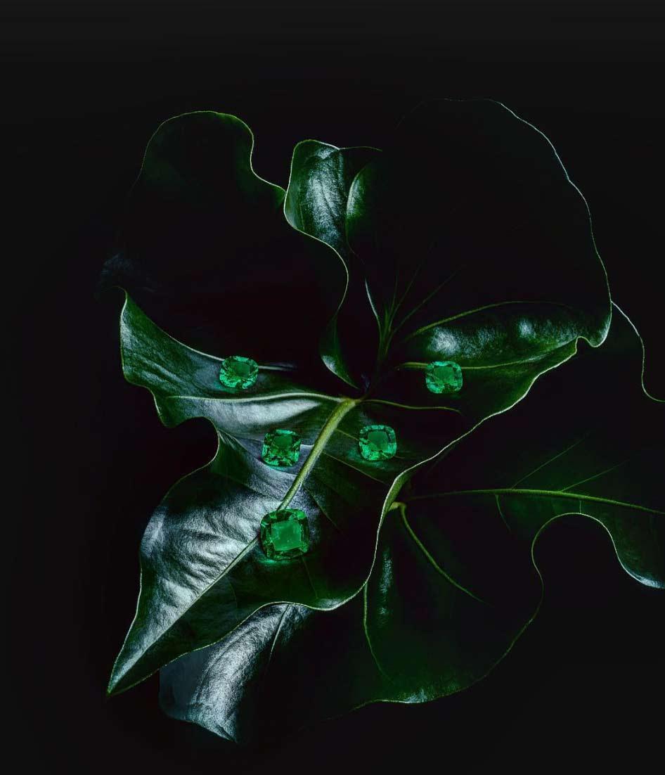 Mcogroup - vivid green columbian emerald asscher shape