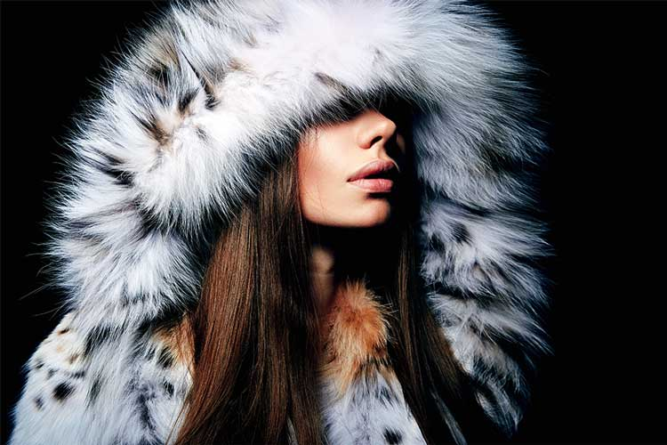 Mcogroup Fur  Manufacturing and Sourcing Industry branches